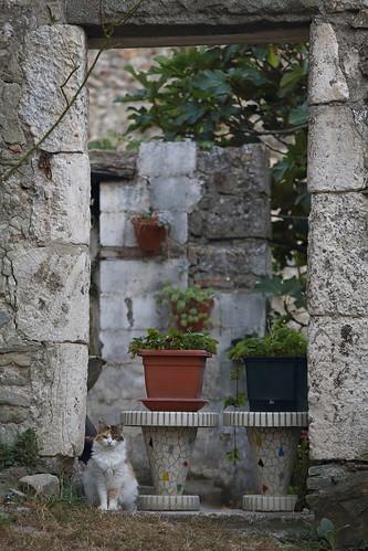 La princesse dans son jardin