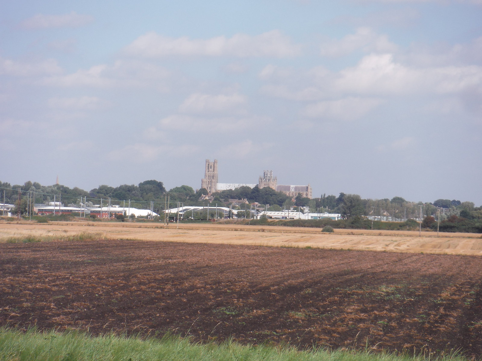 First Sight of Ely Cathedral, from Braham Dock (Drain) SWC Walk 118 Ely Circular