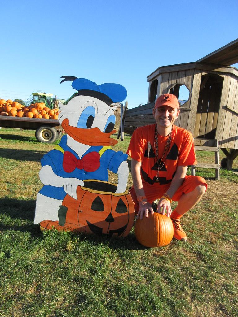 Donald Duck Walt Disney Ryan Janek Wolowski Pumpkin Pick