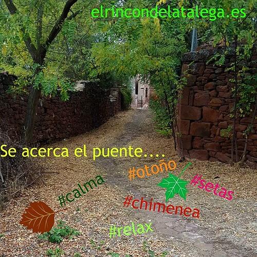 Se acerca un puente.... #SierraDeAlbarracín ¿porqué no?