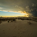 White Sands National Monument by yinzhou1