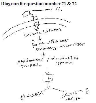 AIPMT Question Bank: Biology - Endocrine System