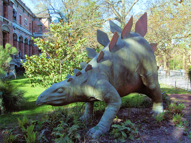 Diplodocus definition meaning for Definition du jardin
