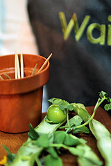 Waitrose Summer Party IMG_7551 R