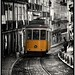 Lisbon Tram by Norfolk & Beyond