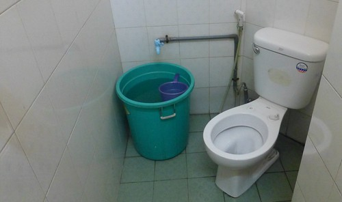asian toilet flush