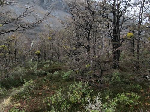 Torres del Paine: trek du W et toutes ses belles couleurs.