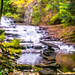 Huyck Preserve by Nature-enthusiast