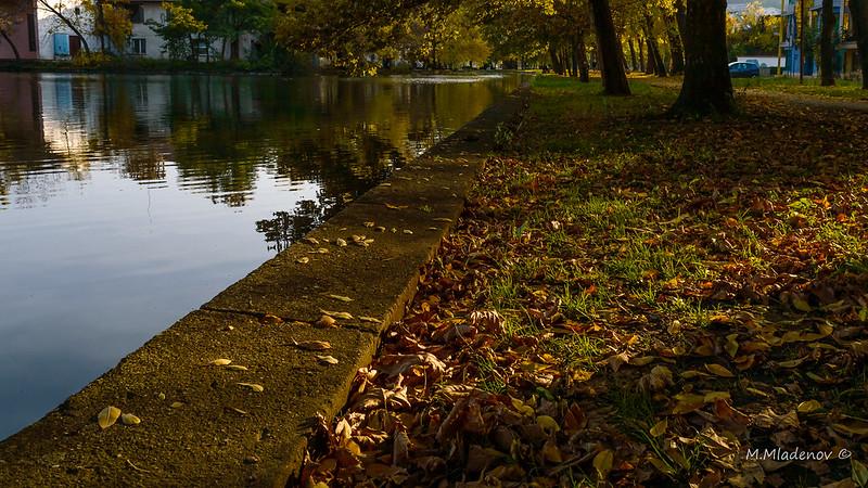 Autumn 010