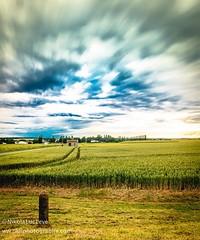les chemins traversent le temps. France.  #nature #mothernature #summer #clouds #cloudporn #beauty #pretty #sunset #flowers #blue #natureza #nature_perfection #naturelovers #naturehippys