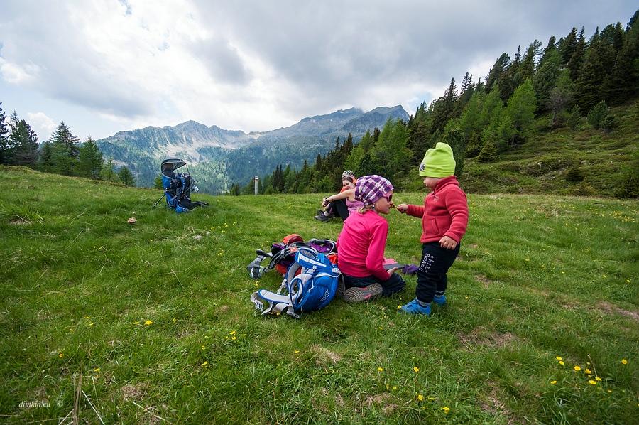 Pinzolo, Trentino, Trentino-Alto Adige, Italy, 0.003 sec (1/320), f/8.0, 2016:06:29 10:56:34+00:00, 10 mm, 10.0-20.0 mm f/4.0-5.6