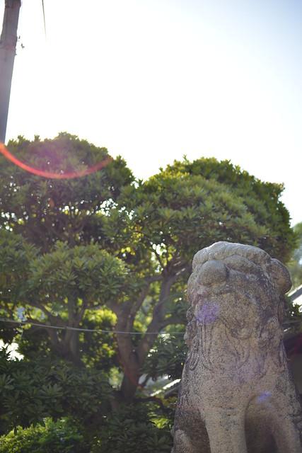 錦織神社 #06