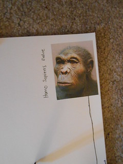 Timeline- Big Bang to Now (16)