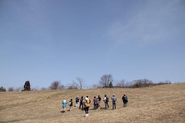 おーいの丘では草原に棲むノスリを待ち空を見上げるものの,今回は出会えなかった.
