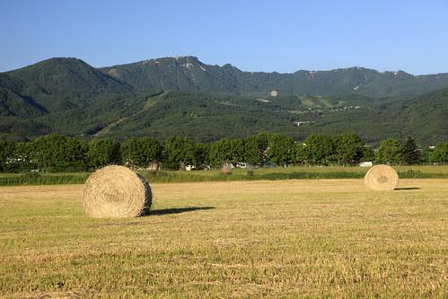 手稲山と牧草ロール