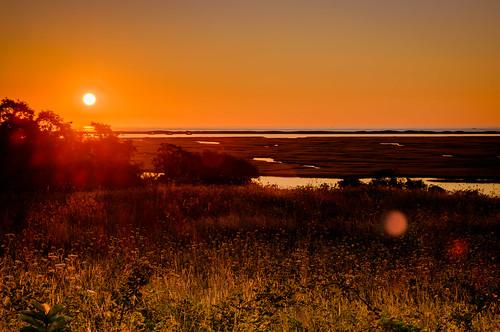 Nauset Marsh Sunrise