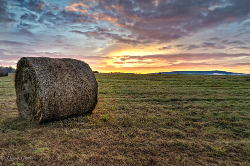 westvirginia bales clouds fall fog haybales meadow sunrise