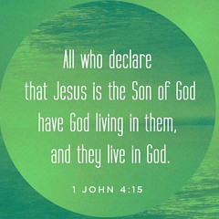 If anyone acknowledges that Jesus is the Son of God, God lives in them and they in God. 1 John 4:15 NIV
