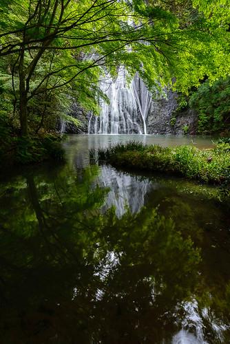 new green leaves japan river waterfall angle ngc wide symmetry 日本 shimane 滝 新緑 島根県 シンメトリー 清滝 大田市 02景色