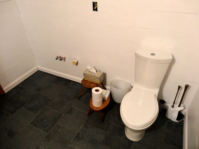 tile, walls and toilet, check
