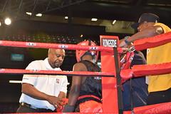 striking combat sports, boxing ring, professional boxing, individual sports, contact sport, sports, combat sport, kickboxing, sanshou, amateur boxing, boxing,