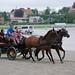 Kasaške dirke v Komendi 18.09.2016 Deveta dirka dvopreg