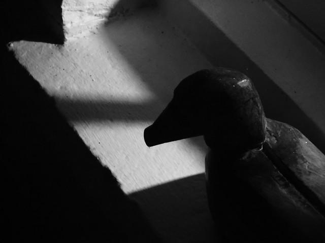 Shadow, Sony DSC-WX60