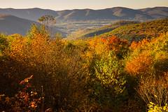 Mount Greylock, Massachusetts