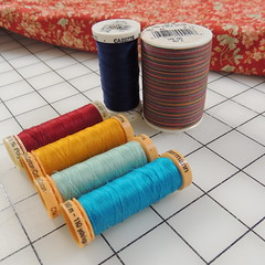 Auditioning Thread for Quilt #3
