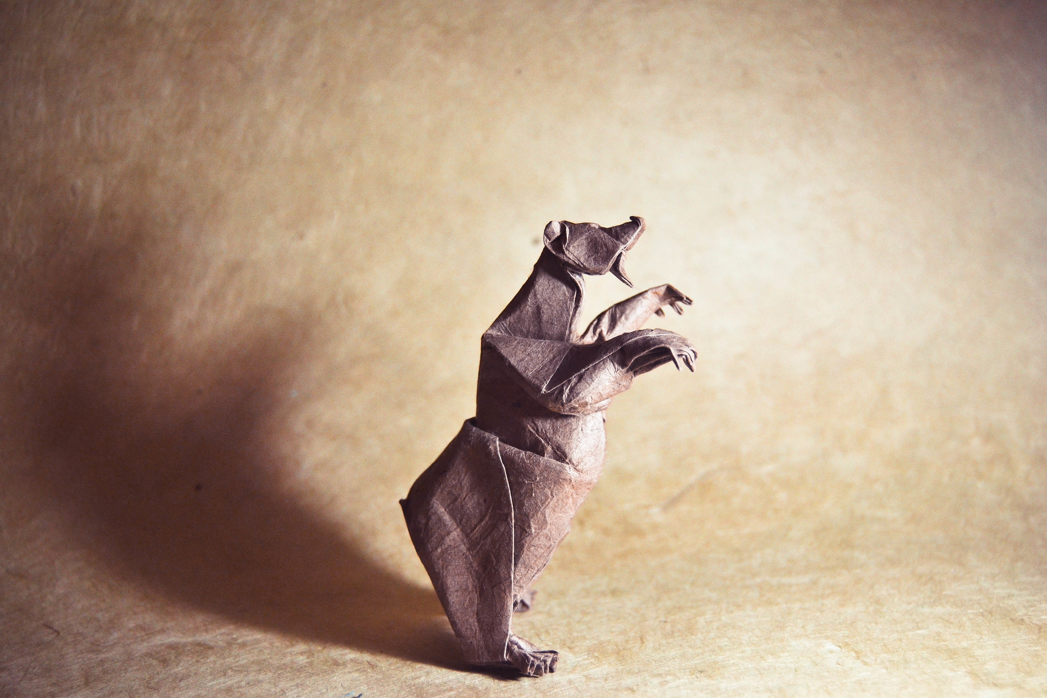 Origami Grizzly Bear . Quentin Trollip