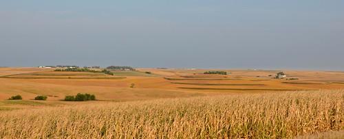 usa corn nikon iowa fields rollinghills d7000 auduboncounty cntyrdn36 cntyrdf16
