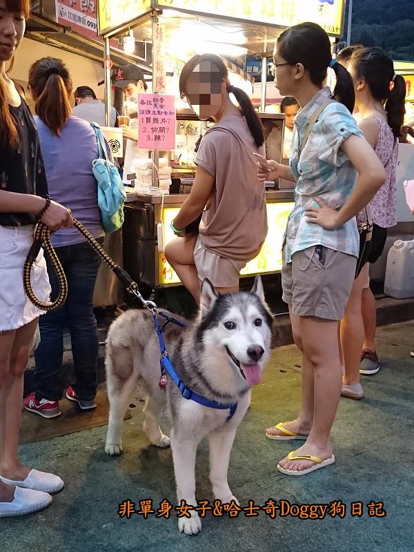 Doggy歡迎光臨05
