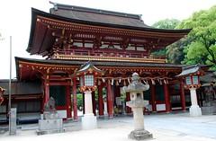 JAPON DAIZAFU (Kyushu)