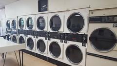 Branch Laundromat Interior2