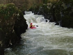 Kayaking: River Teifi (05-Feb-05) Image