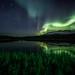 Aurora Borealis by Dan F Skovli