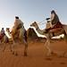 IMG_9257 - camel men  Begrawiya Pyramids (or Meroe)