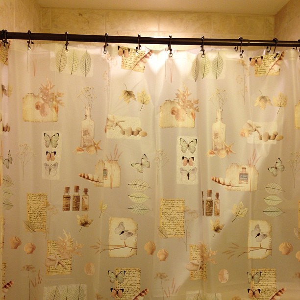 butterfly shower curtain flickr photo sharing