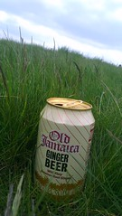 Ginger Beer on the Heath