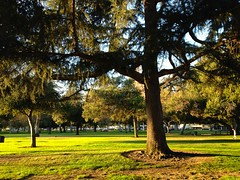 Arcadia County Park