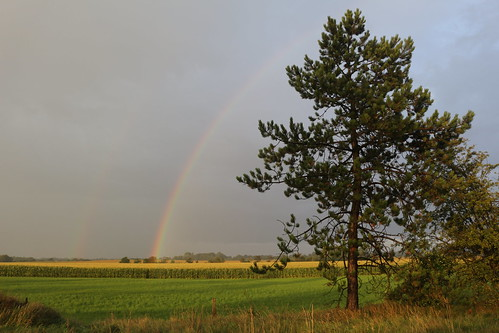 12 Gewitter über Leck - Lexgaard