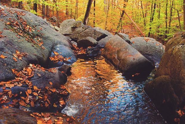 Hacklebarney State Park - Chester, NJ