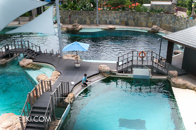 Marine Life Park Singapore - Adventure Cove Waterpark - Dolphins Island bridges