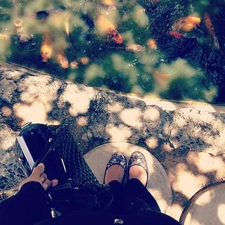 Twinkle toes & Koa Fish at site visits ✨ #behindtherunway #lifeinevents