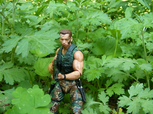 Jungle Patrol Dutch (NECA, Predator, Series 08)