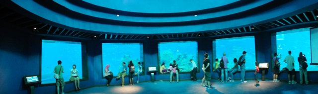 sea aquarium marine life park resort world sentosa singapore (68)