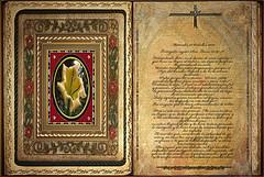 Evangelio según San Lucas 12,39-48. Miércoles 23 Octubre 2013