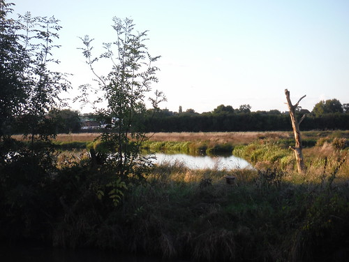 Canalside Meadows