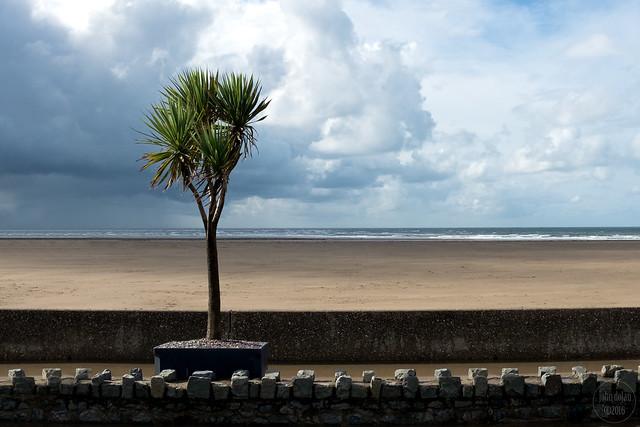 beach | barmouth [explored]