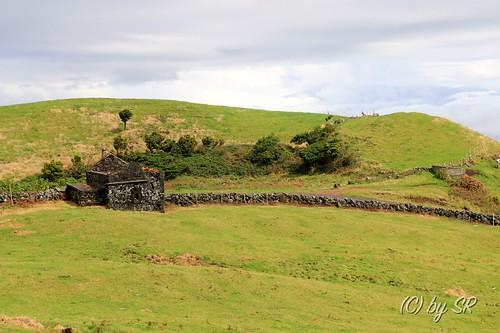 Azores2014_0627